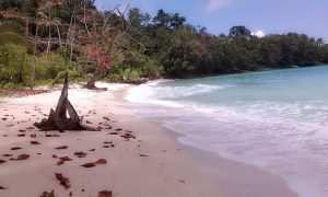 Pantai Patawana