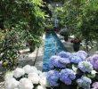 12 Tempat Wisata di Washington DC yang Wajib Dikunjungi