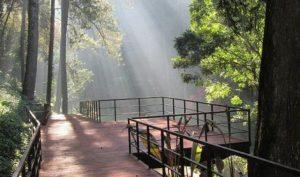http://tempatwisataunik.com/wp-content/uploads/2016/03/Hiking-ke-Maribaya-300x177.jpg