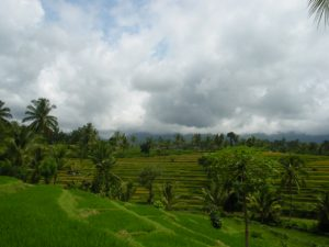 Desa Sapit