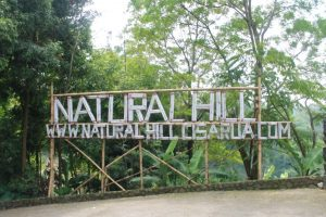 Natural Hill