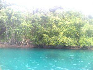 Pulau Meti