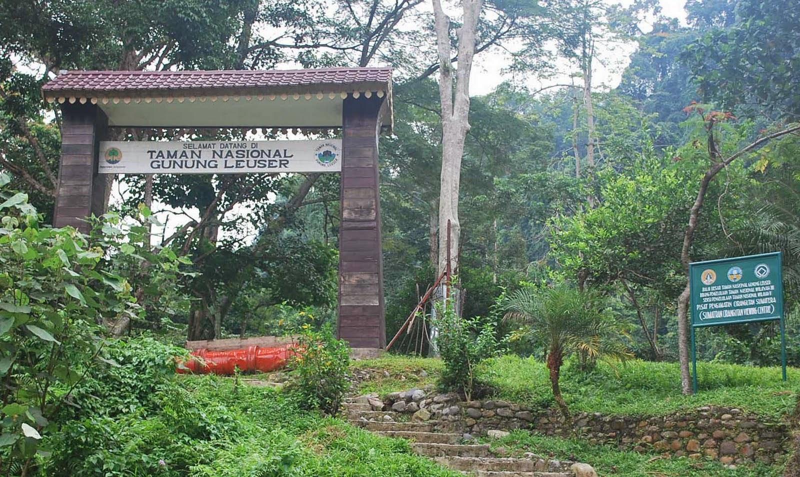 Tempat Wisata Alam di Aceh yang Wajib Dikunjungi - TempatWisataUnik ...