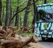 10 Wisata Edukasi di Bogor yang Wajib di Kunjungi