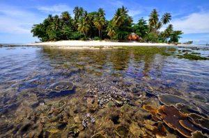 Lokasi dan Akses ke Pulau Kasiak