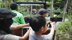 Zona Jungle Adventure