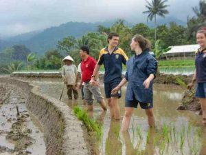 Keunikan Desa Brayut