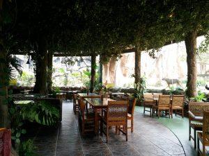 Jungle Fast Food Resto