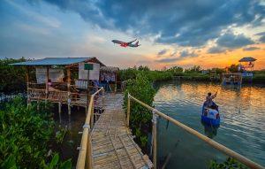 Keindahan Mangrove Edupark