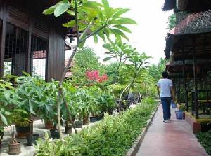 rumah makan rindang alam