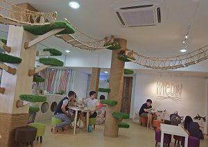 cats cafe johor bahru