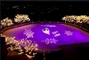 Ice Skating Rink Grand Hyatt Hotel Seoul