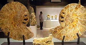 Museum Kerang