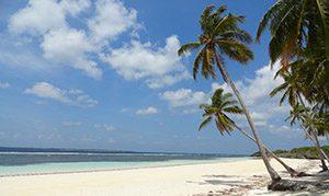 Pantai Pasir Putih Bara