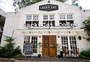 Lucky Cat Coffee