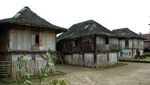 Desa Pekon Hujung