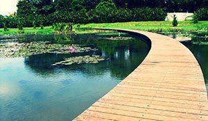 Danau Dora Eco Park