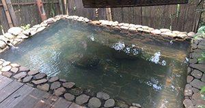 Giri Tirta Hot Spring Resort and Spa