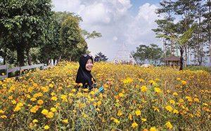 Agrowisata Margomulyo Gunung Kelud