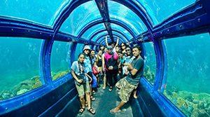 Aquarium Pulau Putri