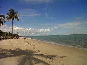 Pantai Kelapa Mangkupadi