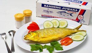 Bandeng Juwana
