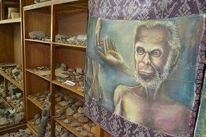 Museum Bikon Blewut