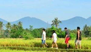 Desa Luwus