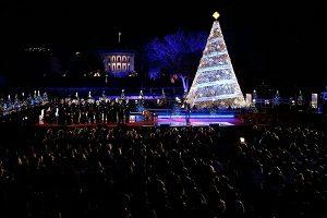 ellipse christmas tree