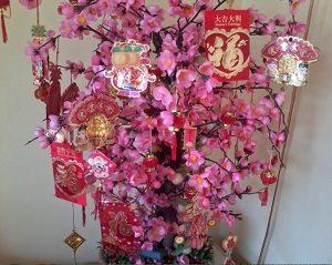 Pohon Mei Hua