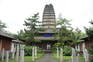 Pagoda Angsa Liar Kecil