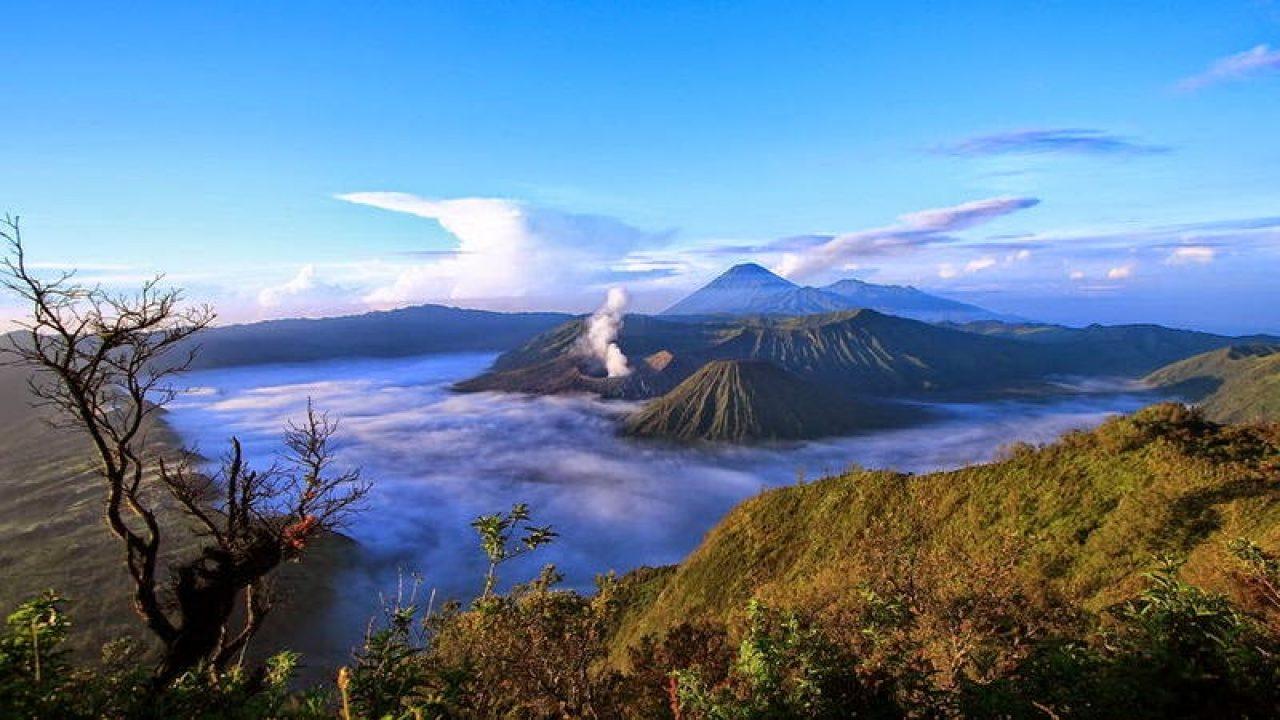 Wisata Ke Jawa Timur