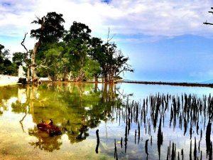 Pantai Lhok Mee