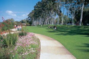 kings_park_and_botanic_garden