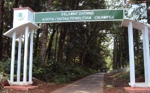Hutan Penelitian Cikampek