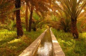 Lembah al Rustaq (al Hoqain)
