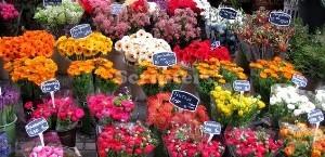 Pasar Bunga Terapung
