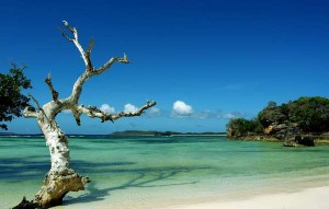 Pulau Rote-Nusa Tenggara Timur