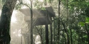 Rumah Pohon dan Paralayang