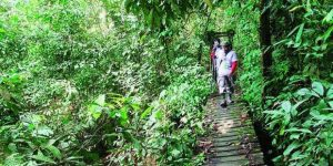 Wisata Taman Nasional Kutai