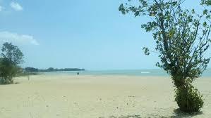 Pantai Nepa dan Hutan Kera Nepa