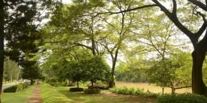Taman Kemang Pratama