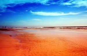 laut merah mesir