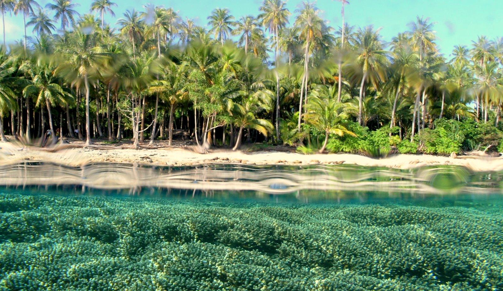 15 Tempat Wisata Di Papua Yang Terkenal Tempatwisataunik Com