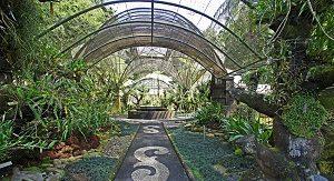 Kebun Raya Bali, Bedugul