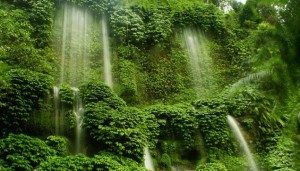 Air Terjun Pitu Pujon, Malang