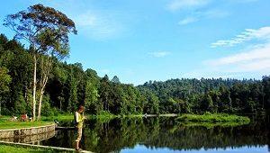 Situ Gede, Bogor