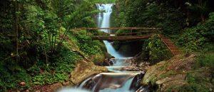 Air Terjun Gitgit Bali – Lokasi, Biaya, Keistimewaan dan Tips