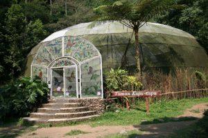 Taman Kupu-kupu