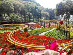 Taman Bunga Selecta - tempat pre-wedding di malang